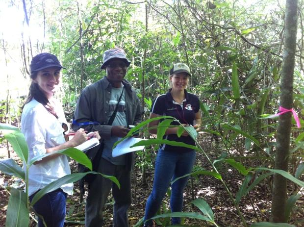 Fieldtrip RE - Meine Gruppe misst den wenig dichten Wald. In der Mitte der Lecturer Segun aus Kamerun
